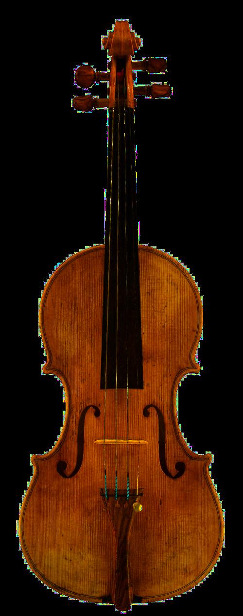 violon 2008